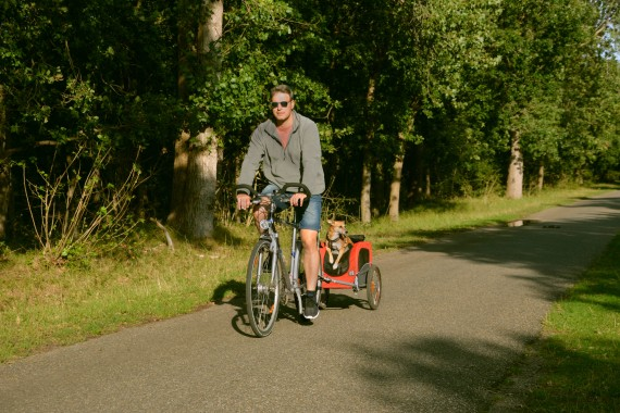 man bicycling dog