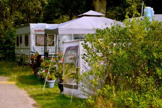 carvan flower campsite