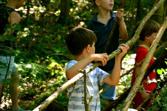 building cabin boy forest