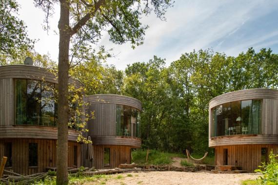 Tree houses exterior