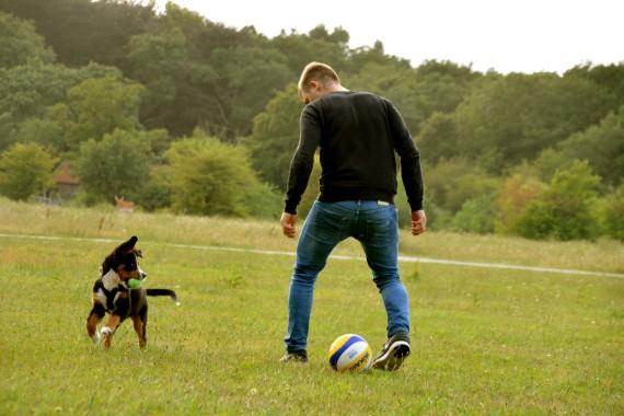puppy playing soccer boy