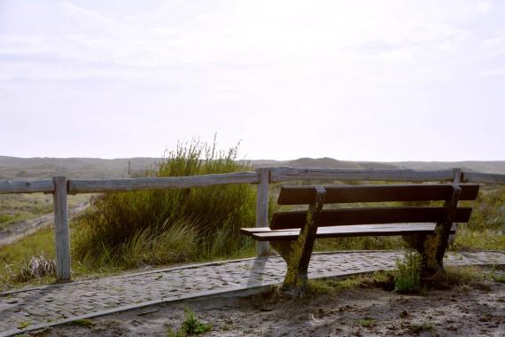 bank dunes kennemerland