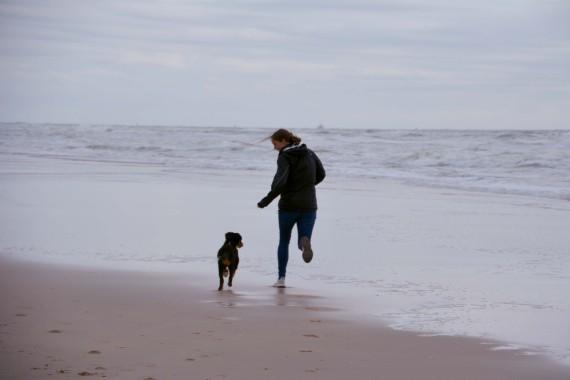 dog girl beach