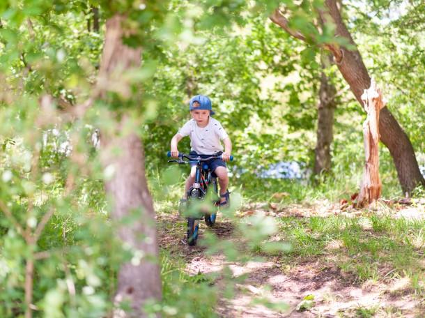 child bicycling bike forest kennemerland geversduin