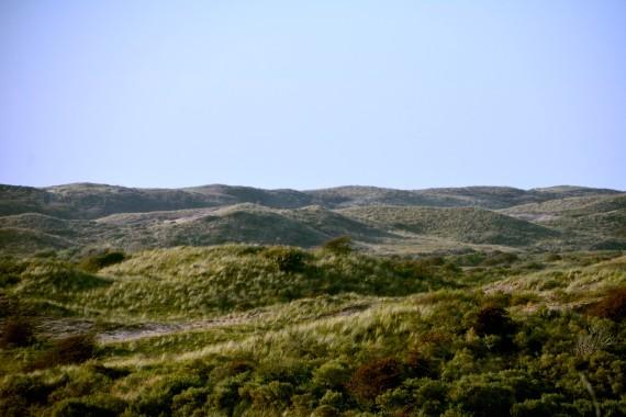 dunes view sky