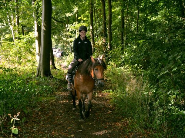 Forestride horse girl Geversduin