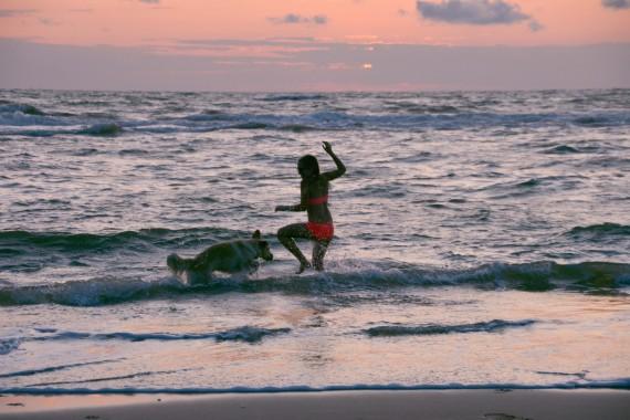 dog girl sunset sea beach playing