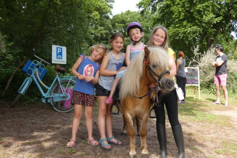 Pony Pleasure Fun Riding children